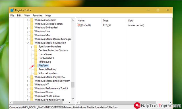 Sửa lỗi Webcam bị crash khi được nâng cấp lên Windows 10 Anniversary + Hình 3